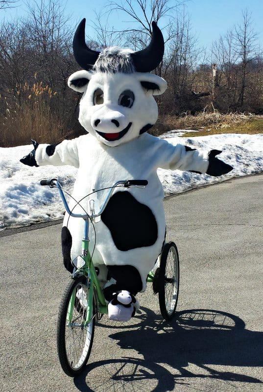 bike cow