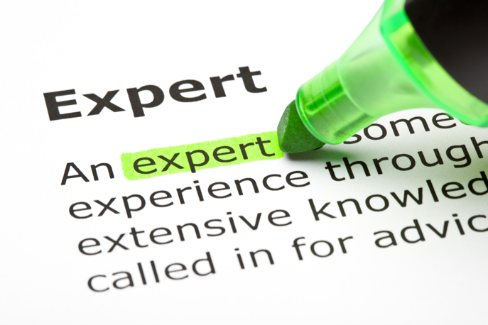 What does it take to be an expert