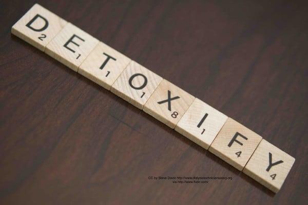 detoxify-business-step-by-step