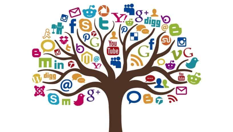 Arbre-réseaux-sociaux