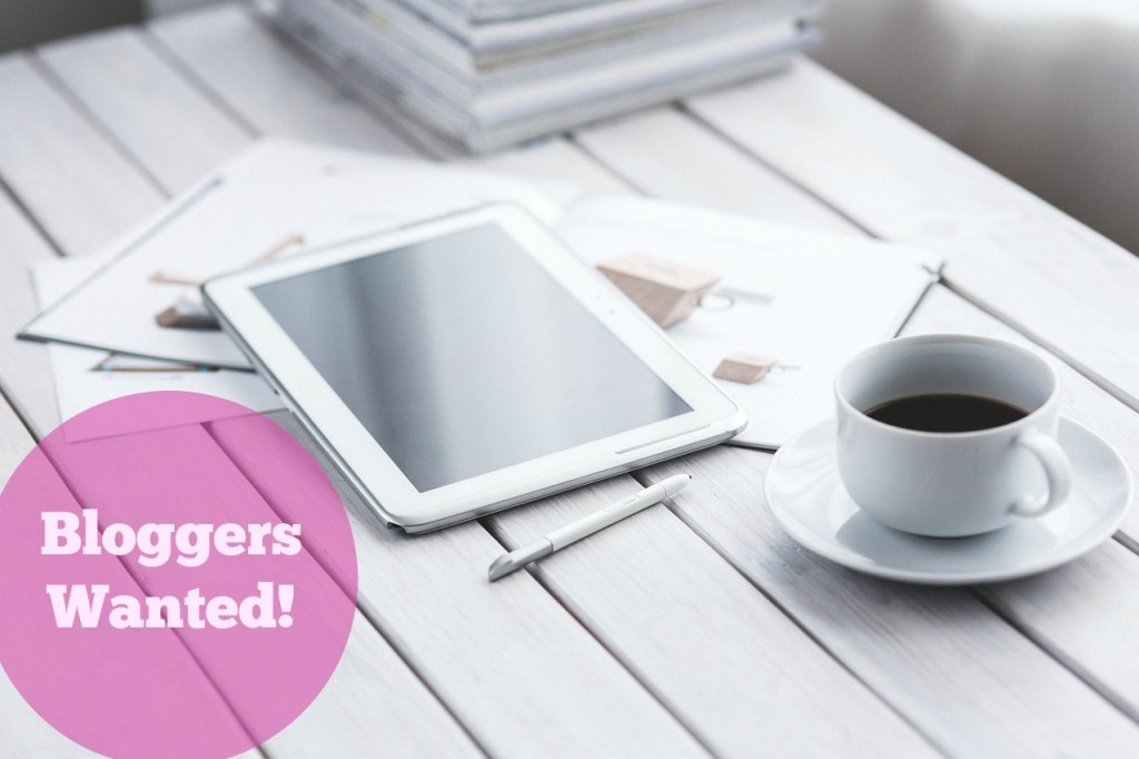 Bloggers Wanted! She Owns It Open Call For Featured