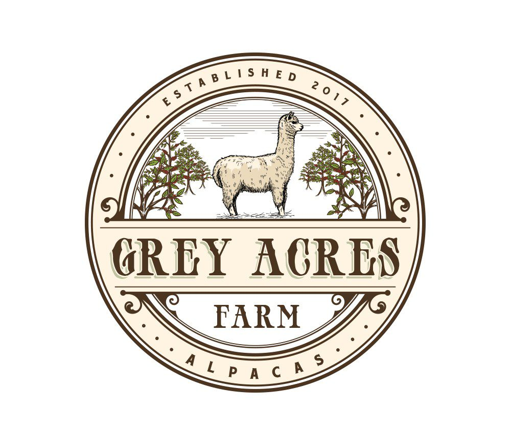 "Grey Acres farm alpacas by A3""."